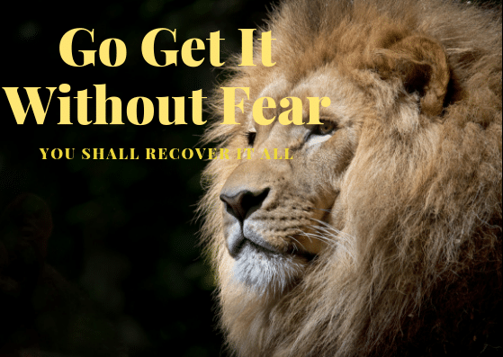 Go Get It Without Fear. You Shall Recover It All.